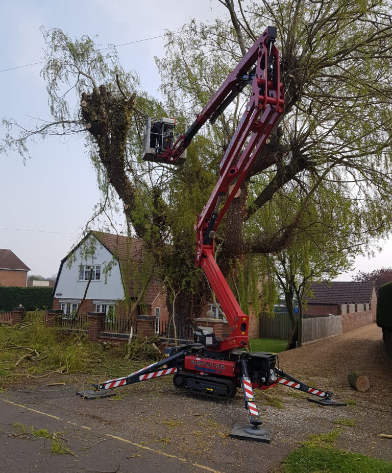 Tree Work - 17m Hinowa Lightlift Spider Tracked Access Platform
