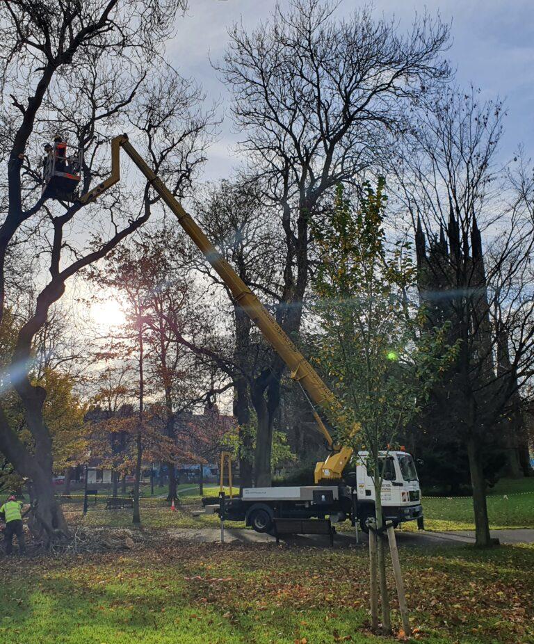 Tree Maintenance - 33m Ruthmann Truck Mounted Vehicle