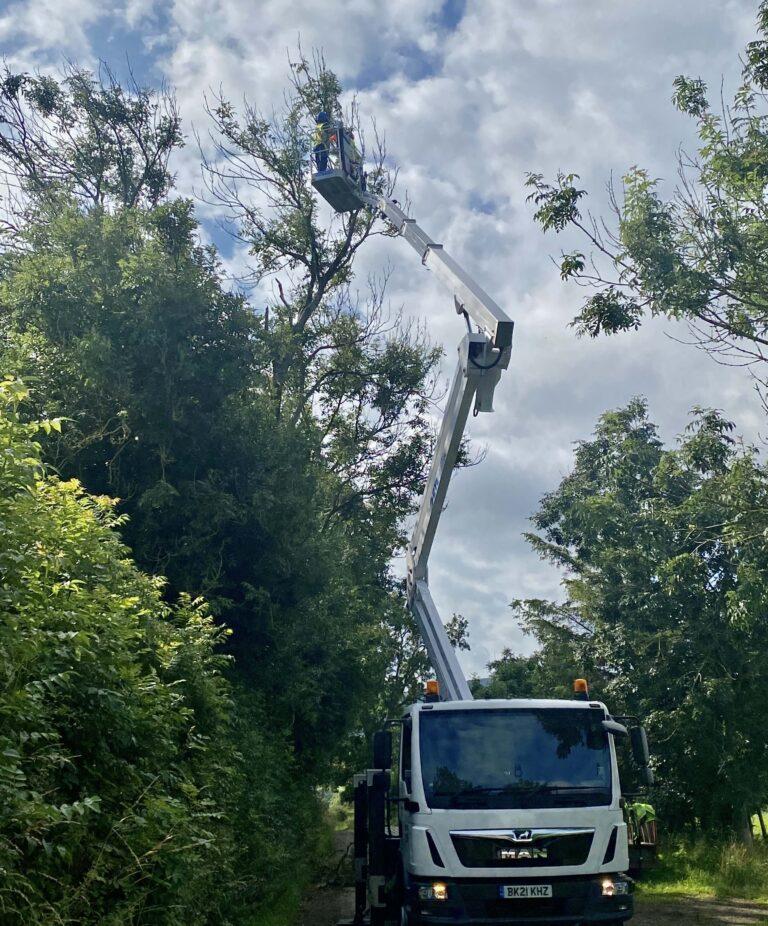 CTE ZED 26JH truck mounted lift platform - Arboriculture work