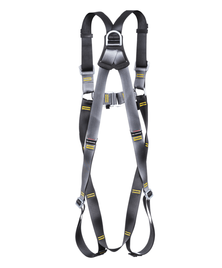 2 Point Safety Harness Back